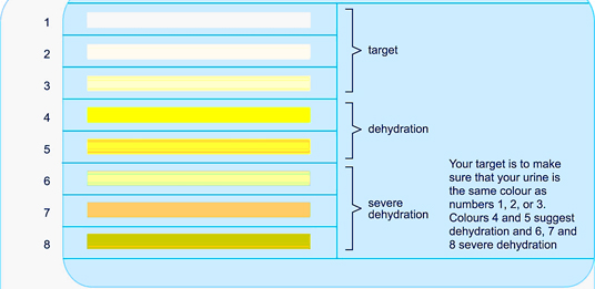 Use urine color to gauge your level of dehydration
