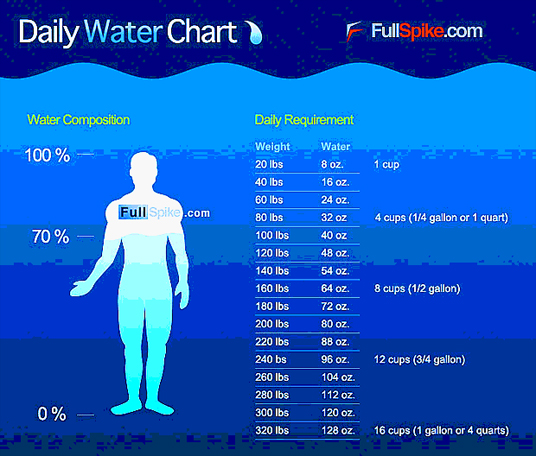 Are Sports Drinks More Effective Than Water
