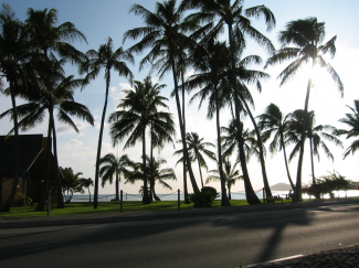 There's more to Hawaii than surf and palm trees.