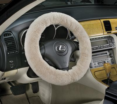 Because they will do unspeakable things to your sheepskin steering wheel cover.